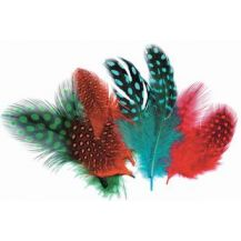 FEATHERS - PARTRIDGE - 10G COLOURED