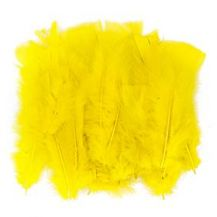 FEATHERS - BAG OF 10g YELLOW