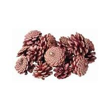 PINE CONES 200G (APPROX 22)