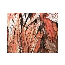 BARK PIECES ASSORTED 250G